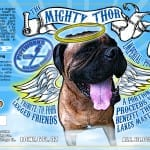 Pipeworks Mighty Thorr