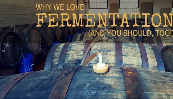 why we love fermentation