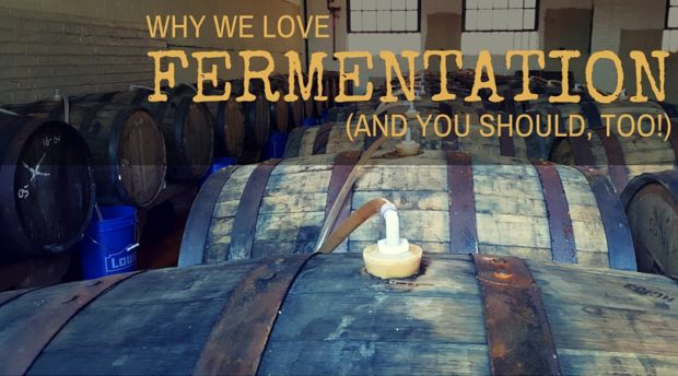 Why We Love Fermentation (And You Should, Too!)