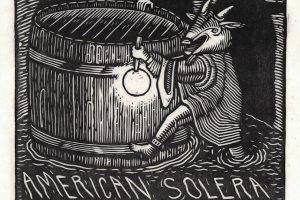 American Solera Oude Foeder