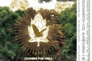 Insurrection Aleworks Looking For Owls Double IPA