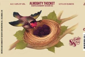 Seventh Son Almighty Thicket Sour Blackberry Saison
